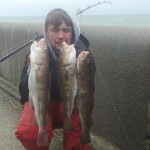 DSAA Codlings by Louis Smith